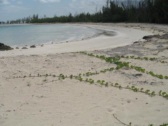 piccola baia barbary beach
