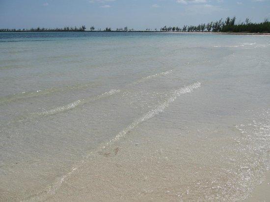 mare  barbary beach