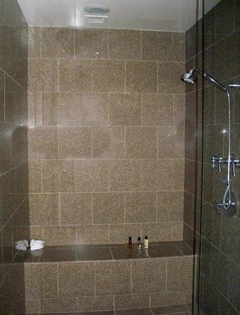 Doubletree by Hilton Anaheim - Orange County:                   Master Bath Shower
