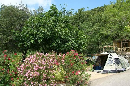 Camping Les Pinedes: emplacement tente
