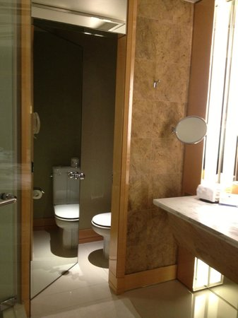 The Ritz-Carlton, Millenia Singapore:                   Toilet