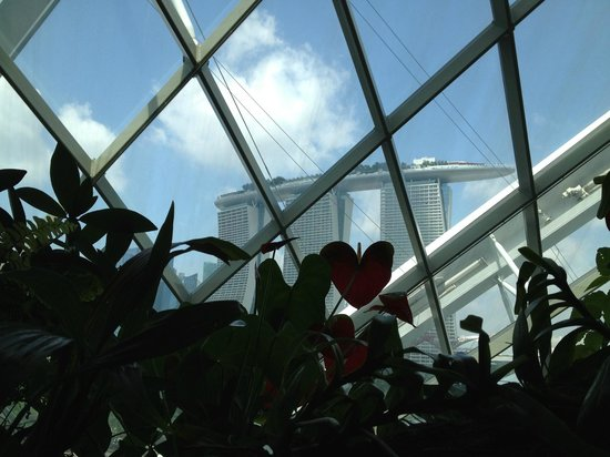 Gardens by the Bay:                                     Inside the dome housing the waterfall