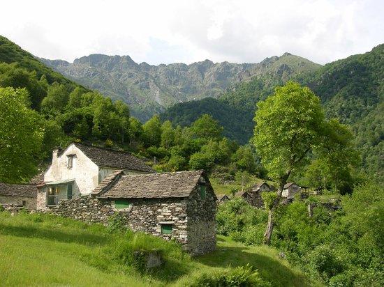 Parco Nazionale Val Grande:                                     Pogallo