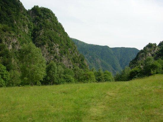 Parco Nazionale Val Grande:                                     I prati di Pogallo
