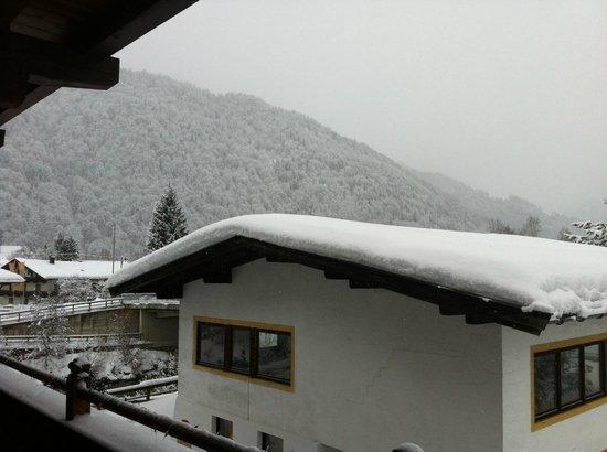 Tasma Hotel:                   Nearby mountains
