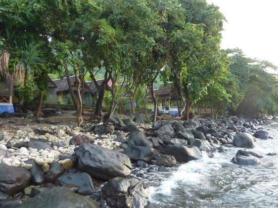 Ankermi / Happy Dive Resort :                   View Ankermi
