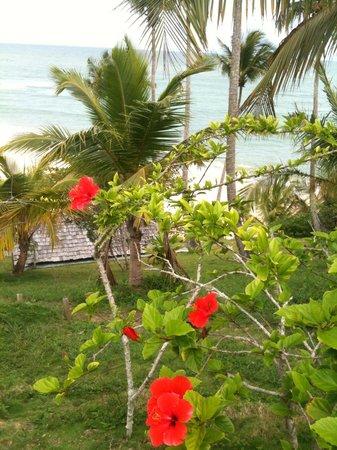 Hotel Fazenda Cala & Divino:                   the view is amazing