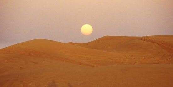 Sand Trax Dubai Desert Safaris:                   cae el sol sobre las dunas