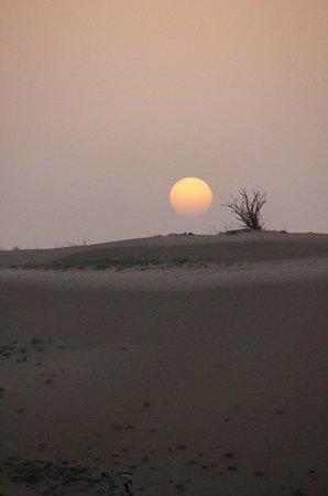 Sand Trax Dubai Desert Safaris:                   final feliz