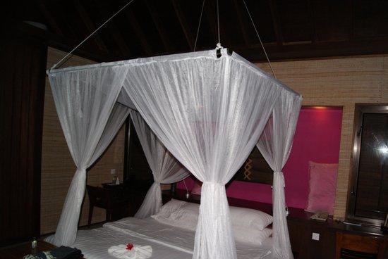 Club Med Kani:                                     la chambre pilotis