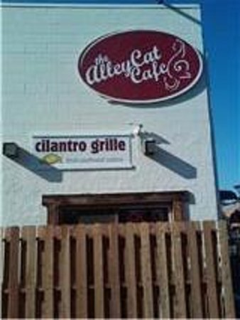Cilantro Grille: View from Alley