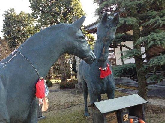 Motoyamaji temple :                   やはり!といいますか、馬の像がありました。