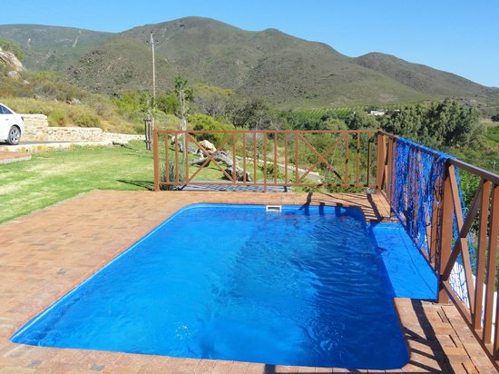 Orange Grove Farm:                   The Pool
