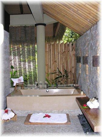 Le Domaine de L'Orangeraie:                   il bellissimo bagno