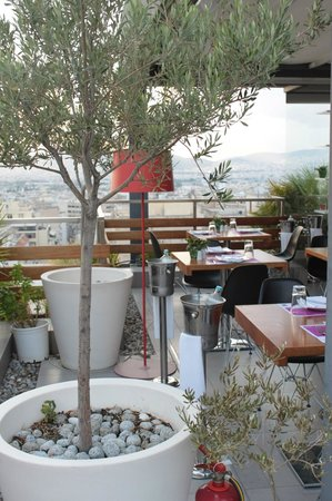 Fresh Hotel:                   Roof Garden and Dining Area
