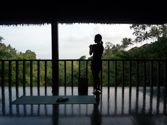 COMO Uma Ubud:                   Yoga pavilion