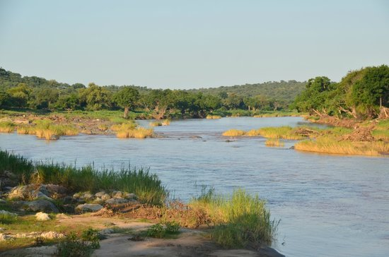 Muweti Bush Lodge:                   Elephant River