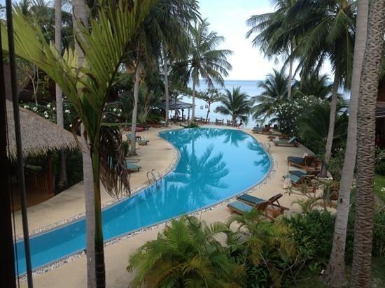 Green Papaya Resort :                   great pool