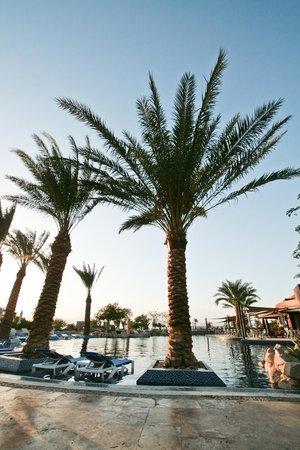 Mövenpick Resort Tala Bay Aqaba:                   1