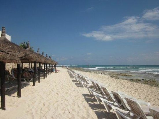 Mayan Palace Riviera Maya:                   Beachfront                 