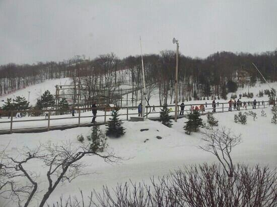 Blue Mountain Inn:                   a view of the ski hills right outside our 'slopeside condo'.