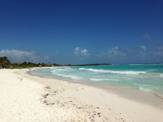 Catalonia Royal Tulum:                   Really nice beach and water