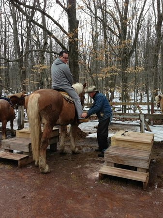 Deer Path Riding Stable:                                     Chalie