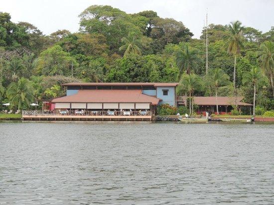 تورتوجا لودج آند جاردنز:                   Tortuga Lodge from airstrip across the river                 