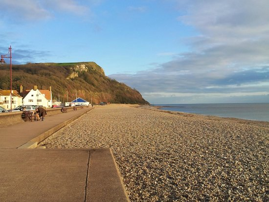 Bay Tree House: Haven Cliff from Seaton beach