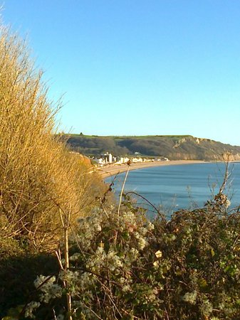 Bay Tree House: Seaton from Seaton Hole