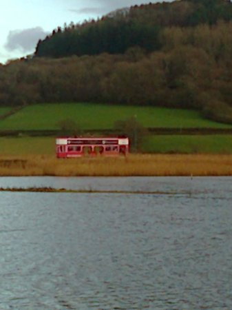 Bay Tree House: Pink tram at Axe Estuary