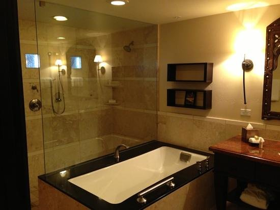 Omni Scottsdale Resort & Spa at Montelucia:                   Bathroom