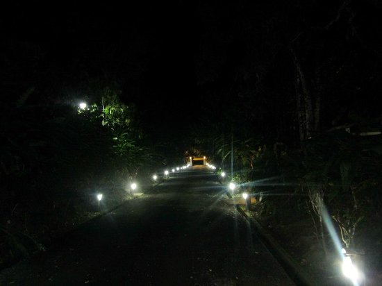 Jardin Cacao Restaurant:                   The lit driveway