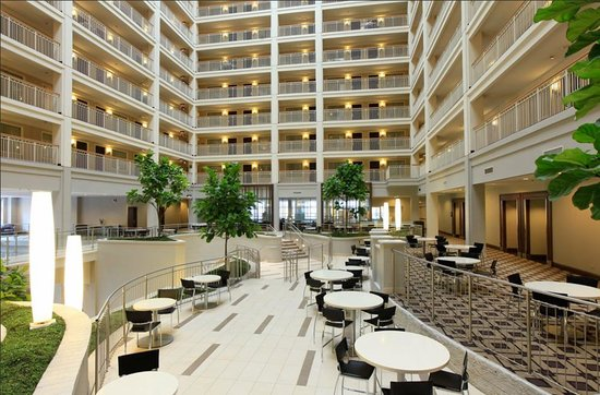 Embassy Suites by Hilton Chicago Downtown: Atrium seating