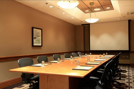 Embassy Suites by Hilton Chicago Downtown: Board Room