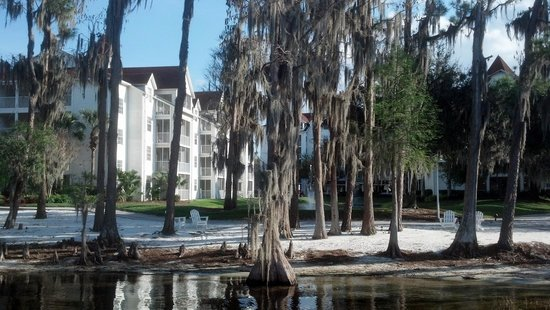 Diamond Resorts Grand Beach:                   Trees and Spanish moss were incredible