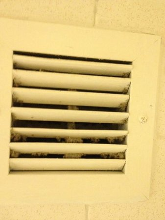 BEST WESTERN Lake Buena Vista Resort Hotel:                   Mold in shower vent - my parents had the same thing in theirs