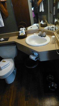 جالينا ستوني كريك:                   Bathroom.                 