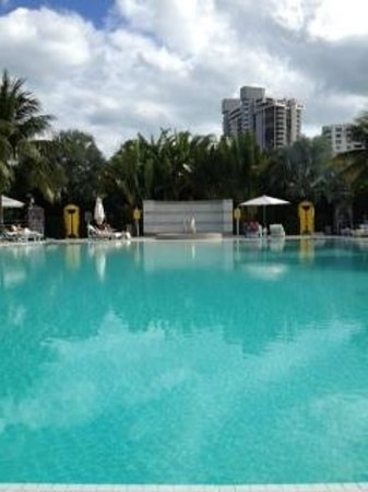 The Standard, Miami:                   The Standard Infinity Pool on Biscayne Bay