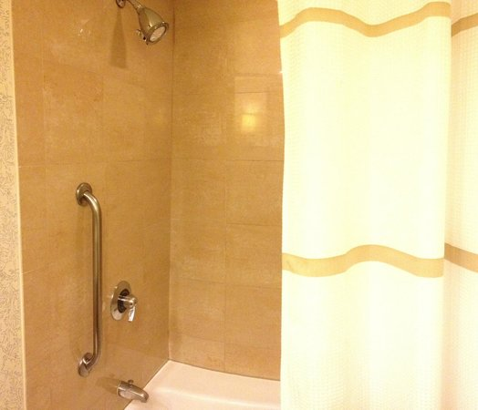 Laguna Cliffs Marriott Resort & Spa:                   shower