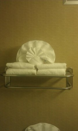 Clarion Hotel & Conference Center North Atlanta:                   Sea Shell Towel