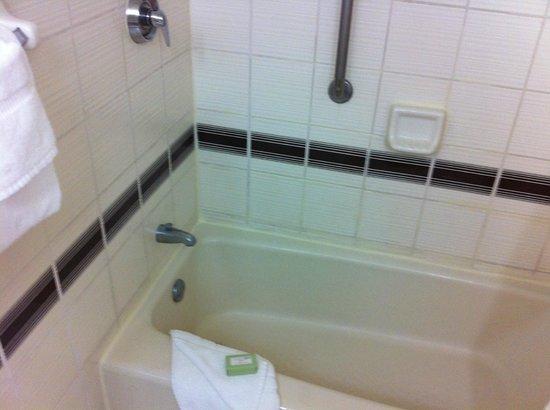 Regency Hotel Miami:                   Shower and bath