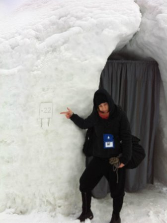 Village des Neiges:                   Hotel room..-22 ont 22..-22..;) standard igloo room ...yess that curtain is th