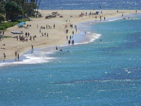 Sheraton Maui Resort & Spa:                   .