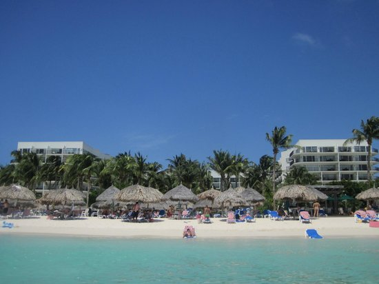Aruba Marriott Resort & Stellaris Casino:                   View of the hotel and Beach area at the Marriott