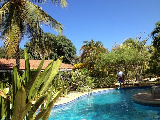 Hotel Bula Bula:                   Nicely landscaped pool area