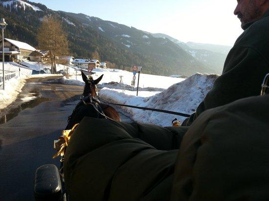 Agritur Maso Lena:                                     passeggiate a cavallo