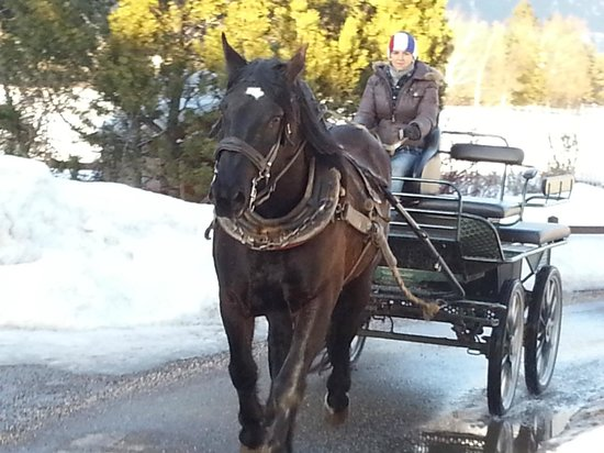 Agritur Maso Lena :                                     passeggiate in carrozza