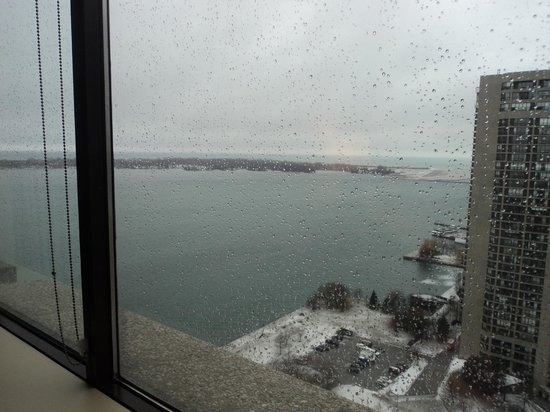 The Westin Harbour Castle:                   View