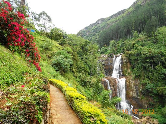 Heritance Tea Factory: Fantastic Waterfall En-route